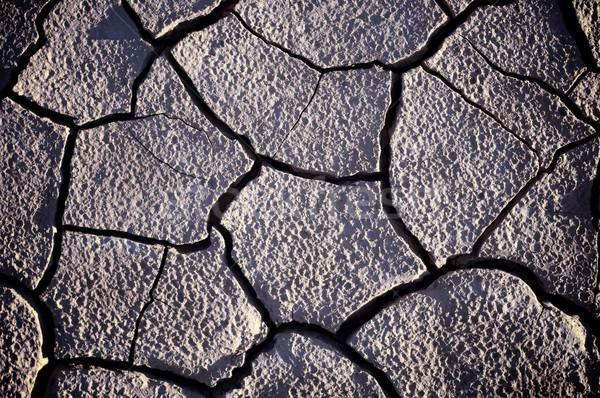 Fango crepe texture sfondo terra estate Foto d'archivio © pedrosala