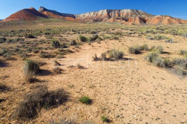 Arid landscape Stock photo © pedrosala