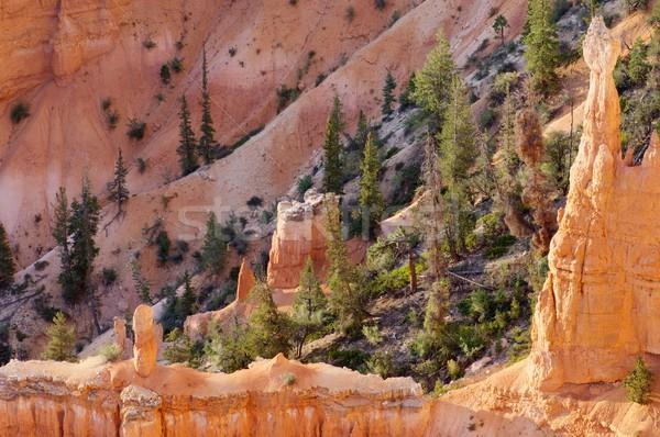 Bryce Canyon Stock photo © pedrosala