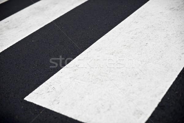 ストックフォト: シマウマ · 塗料 · トラフィック · パターン · 背景 · 徒歩
