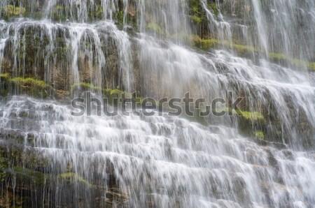 Cola cascata parco acqua natura fiume Foto d'archivio © pedrosala