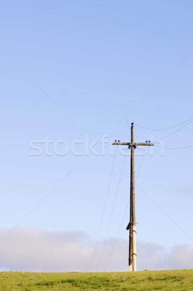 Solitude solitaire électriques pôle prairie nuages Photo stock © pedrosala