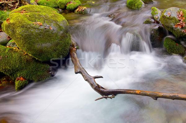 Patak selymes folyam erdő ősz völgy Stock fotó © pedrosala