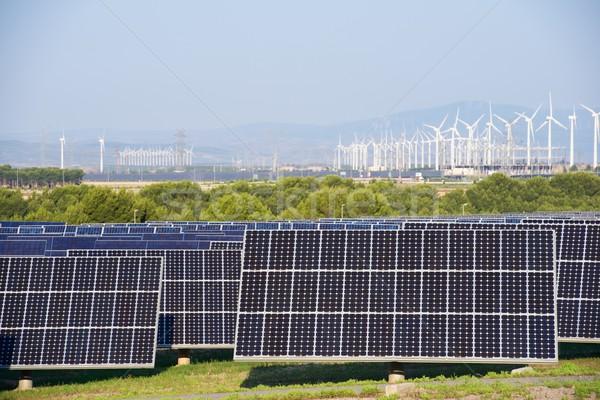 Megújuló energia fotovoltaikus energia gyártás természet technológia Stock fotó © pedrosala