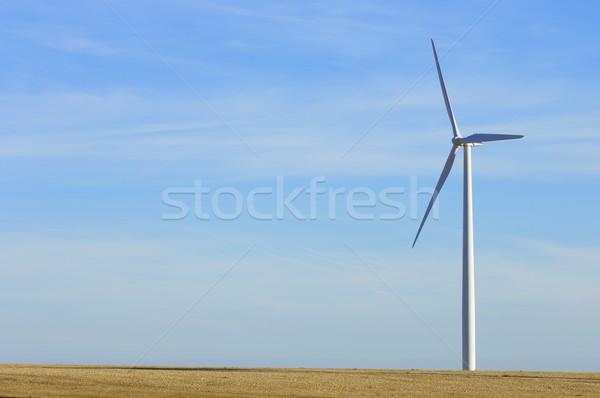 windmill Stock photo © pedrosala