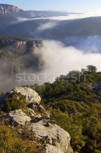 mountain landscape Stock photo © pedrosala