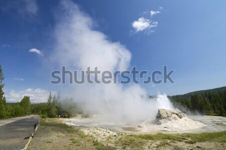 Geiser klein park Verenigde Staten water bos Stockfoto © pedrosala