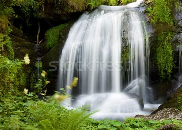Waterfall in Germany Stock photo © pedrosala