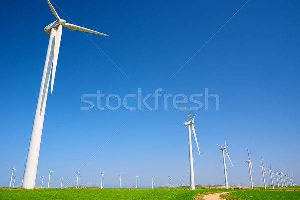 Wind energie elektrische macht productie groene Stockfoto © pedrosala