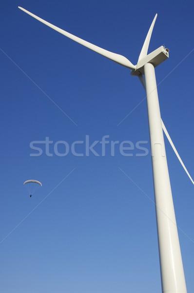 Fly Stock photo © pedrosala