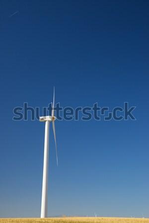 Foto d'archivio: Vento · energia · gruppo · rinnovabile · elettrici · produzione