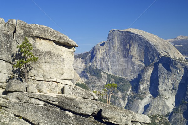 Mitad cúpula vista montana parque nacional de yosemite California Foto stock © pedrosala
