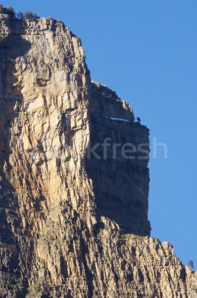 Ordesa National Park Stock photo © pedrosala