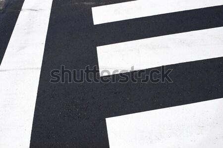 Stok fotoğraf: Zebra · yol · sokak · çapraz · karayolu · trafik