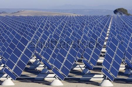 solar field Stock photo © pedrosala