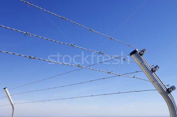 barbed wire fence Stock photo © pedrosala