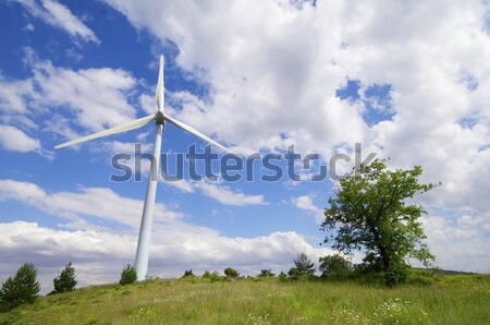 windmills Stock photo © pedrosala