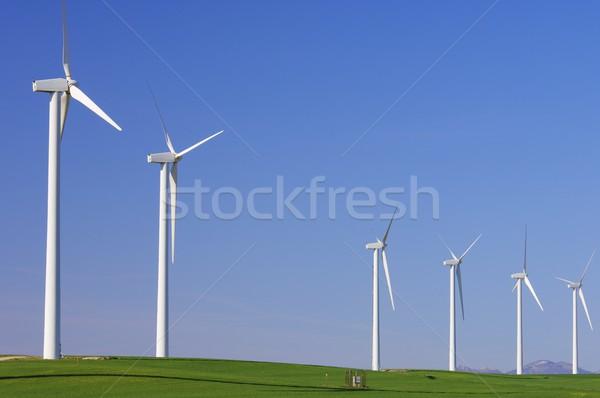 Idyllisch groene heldere hemel gras landschap Stockfoto © pedrosala
