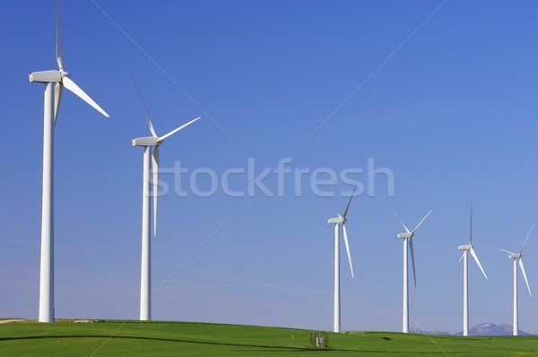 Pastoral yeşil açık gökyüzü çim manzara Stok fotoğraf © pedrosala