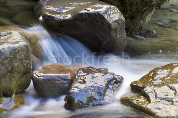 Torrente dettaglio montagna Spagna salute cascata Foto d'archivio © pedrosala