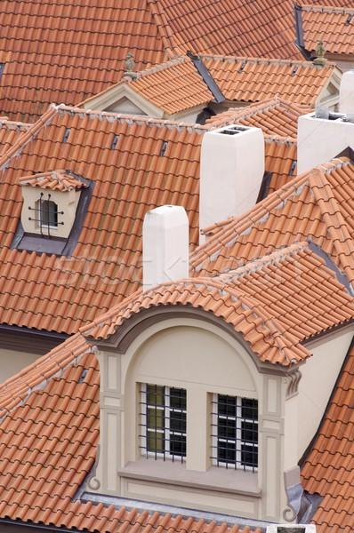 red roof Stock photo © pedrosala