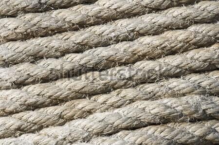 rope rolled Stock photo © pedrosala