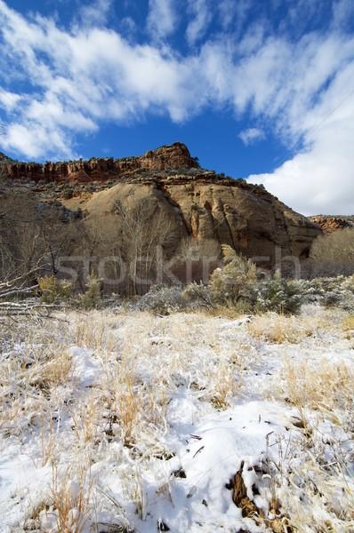 Indio arroyo vista invierno naturaleza paisaje Foto stock © pedrosala