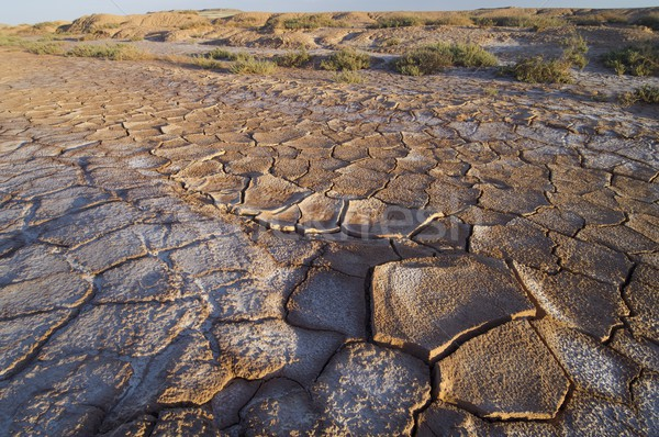 Landscape with cracked mud in Spain Stock photo © pedrosala