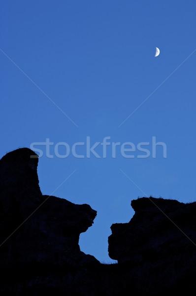 Moonrise Stock photo © pedrosala