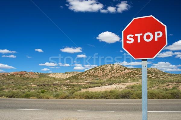Durdurmak sinyal trafik işareti mavi gökyüzü mavi karayolu Stok fotoğraf © pedrosala
