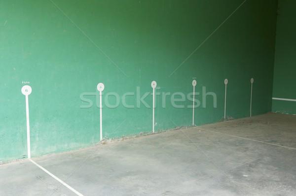pelota court Stock photo © pedrosala