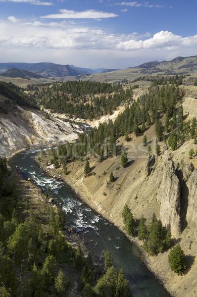 Yellowstone Stock photo © pedrosala