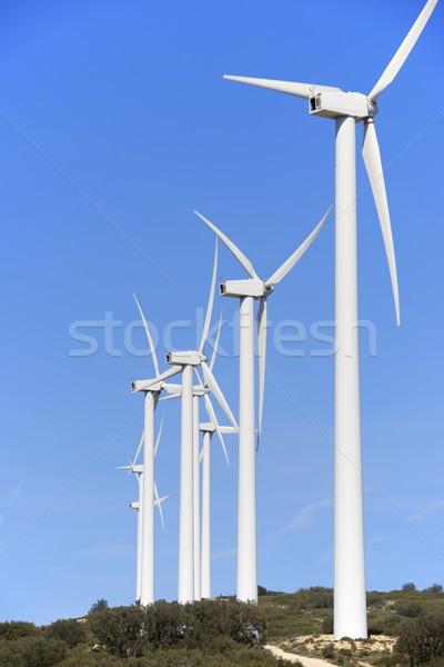 ветер энергии электрических власти производства технологий Сток-фото © pedrosala