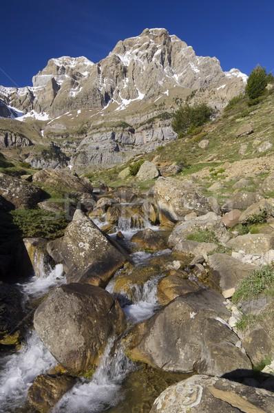 Pyrenean landscape Stock photo © pedrosala