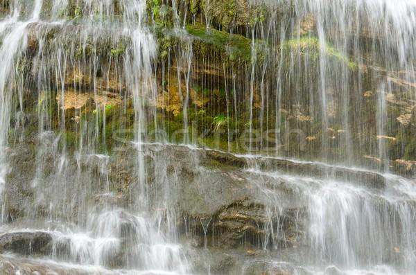 Cola waterval park water natuur achtergrond Stockfoto © pedrosala