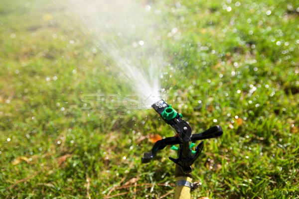 Sprinkler Stock photo © pedrosala