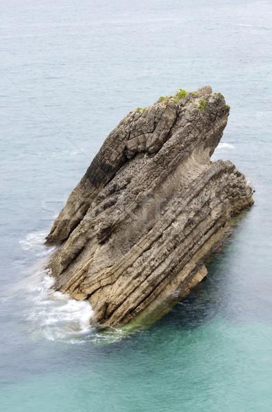 rock Stock photo © pedrosala