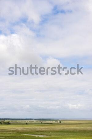 Normandia tipikus felhő tájkép Franciaország fa Stock fotó © pedrosala
