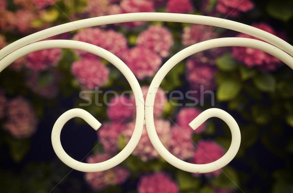 Fém szék fehér kilátás kert virág Stock fotó © pedrosala