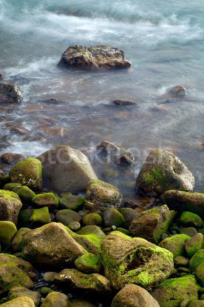 Madeira görmek plaj Portekiz deniz arka plan Stok fotoğraf © pedrosala