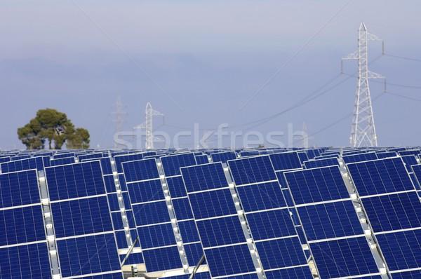 solar energy Stock photo © pedrosala