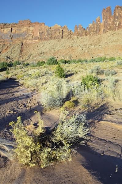Indian torrente rupe Utah USA cielo Foto d'archivio © pedrosala