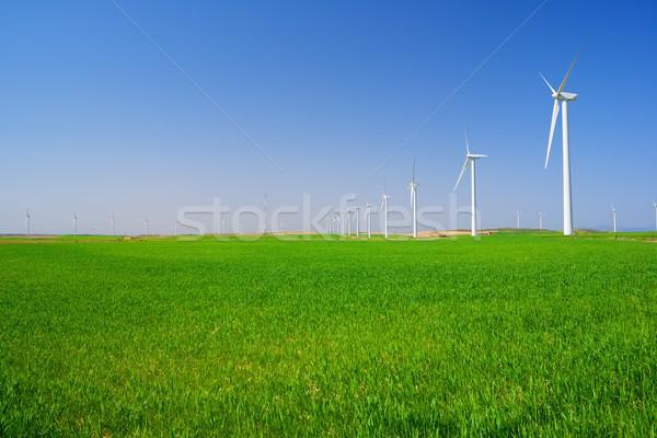 Wind energie elektrische macht productie gras Stockfoto © pedrosala