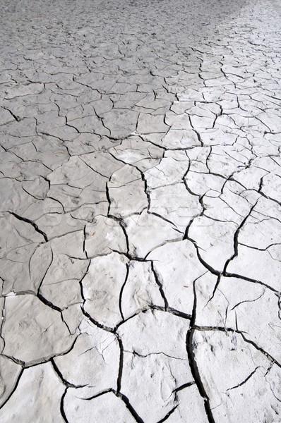Cracked earth Stock photo © pedrosala
