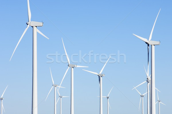 Groep elektriciteit productie blauwe hemel technologie groene Stockfoto © pedrosala