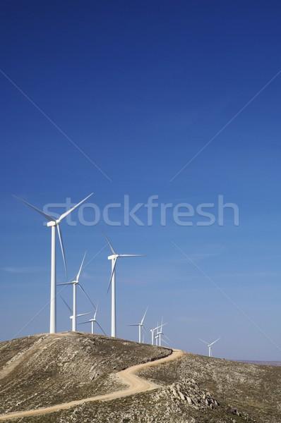 Grupo colina dia tecnologia azul energia Foto stock © pedrosala