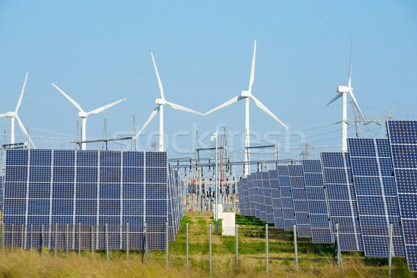Megújuló energia fotovoltaikus energia gyártás nap technológia Stock fotó © pedrosala