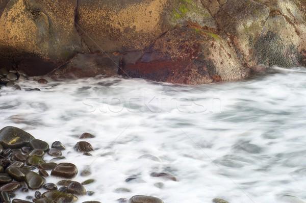 Madeira görmek plaj Portekiz doku manzara Stok fotoğraf © pedrosala