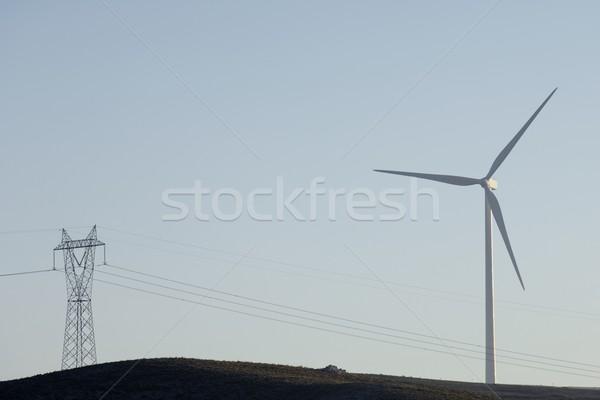 エネルギー 現代 風車 電気 電源 生産 ストックフォト © pedrosala