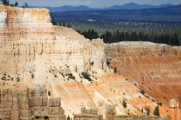 Bryce Canyon view Stock photo © pedrosala